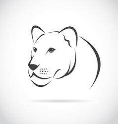 image of an female lion head vector image vector image