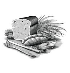 bread collection vintage engraving style black vector image