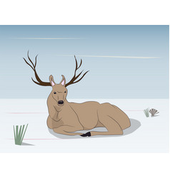 deer lies on nature vector image