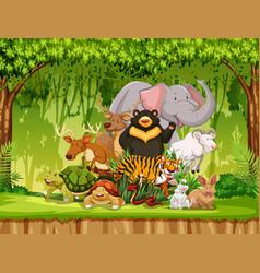 Group of animals in jungle scene vector