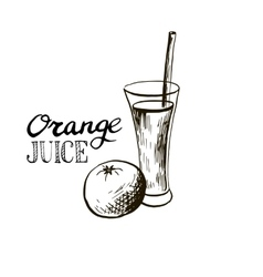 hand drawn orange juice in glass vector image