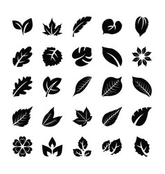 Leaf glyph icons vector