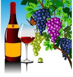 new wine vector image