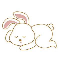 sleeping bunny on white background vector image