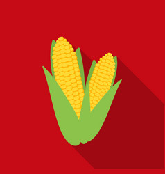 Sweet corn icon in flate style isolated on white vector