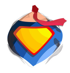 superhero logo diamond shield symbol shape badge vector image