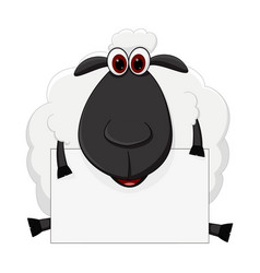 sheep cartoon sit with sign vector image