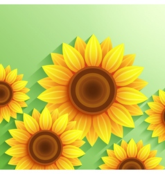 Nature modern background with 3d sunflower vector image vector image