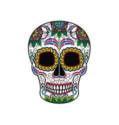 mexican sugar skull with floral pattern day of vector image