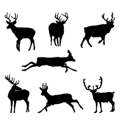 deers vector image vector image