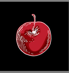 Delicious ripe cherry isolated on black background vector