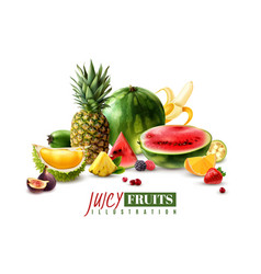 fruits berries realistic composition vector image