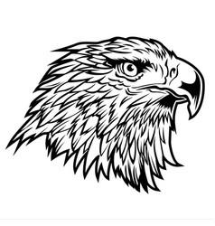 Head hawk eagle usa america logo on white ba vector