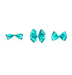 Holiday satin gift bow knot aquamarine ribbon vector