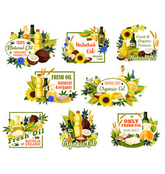 Organic sunflowers and olive oil products vector