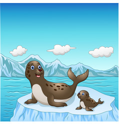 Seal family cartoon on ice floes vector
