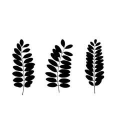set of black tree leaf silhouettes vector image