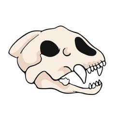 tiger skull cartoon motif set vector image