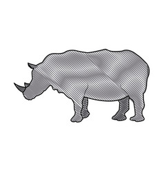 rhino wild animal africa exotic mammal vector image vector image