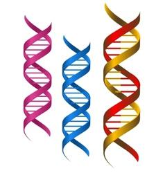 DNA elements vector image