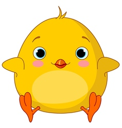 Yellow chick vector