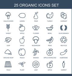 25 organic icons vector