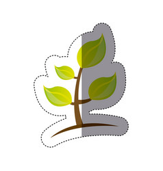 Color sticker silhouette of plant with stem and vector