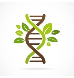 DNA genetic icon - tree with green leaves vector image