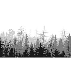 Horizontal of coniferous wood vector