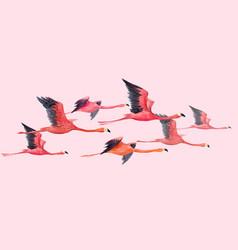 watercolor flamingo vector image