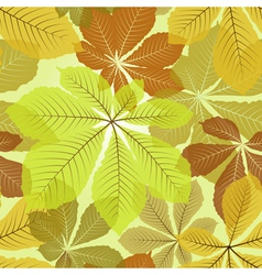 Chestnut leaves vector image vector image