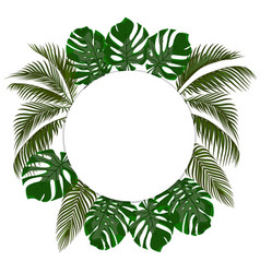 green leaves of tropical palms in a circle vector image vector image