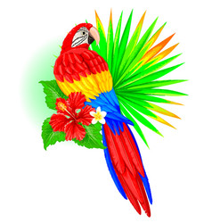 parrot with palm leaf and hibiscus vector image vector image