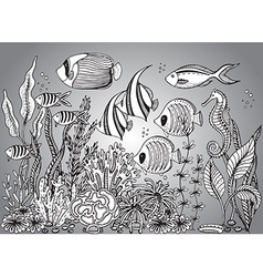 monochrome hand drawn with seashell vector image vector image
