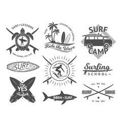 elements for labels or badges surfing vector image