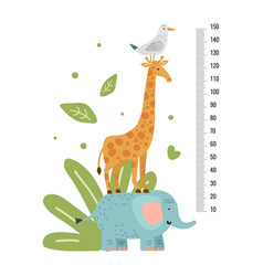 height measure measuring ruler children growth vector image