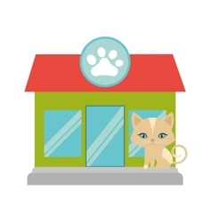 Kitten blue eyes pet shop facade paw print vector