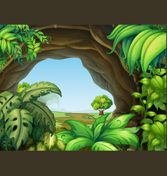 Plant in the cave vector