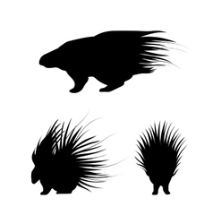 Porcupine silhouettes vector
