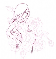 pregnant vector image