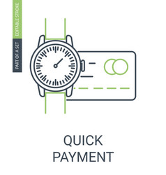 Quick payment icon vector