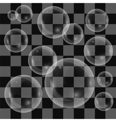 Transparent Soap Bubbles Isolated vector image