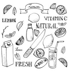 lemon sketch set vector image vector image