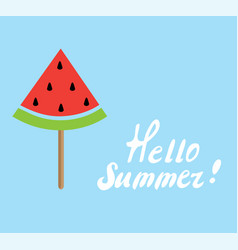 summer time watermelon vector image