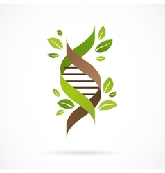 DNA genetic icon - tree with green leaves vector image vector image
