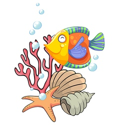 Different sea creatures vector image vector image