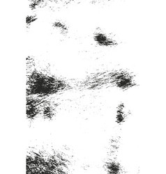 Distressed overlay texture of natural fur vector
