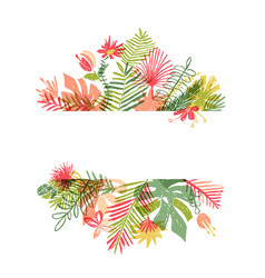 hand drawn tropical flower botanical framing vector image