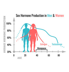 Hormone production chart vector