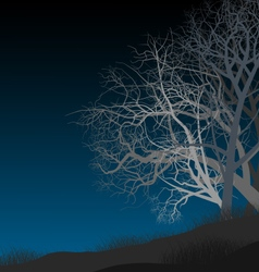 Night autumn vector